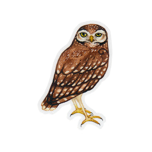 Burrowing Owl Sticker