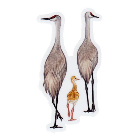 Sandhill Crane Family Vinyl Sticker