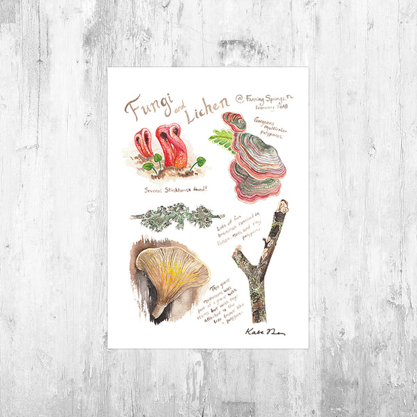 Nature Journal Fungi and Lichen Art Print