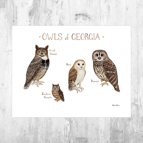 Georgia Owls Field Guide Art Print