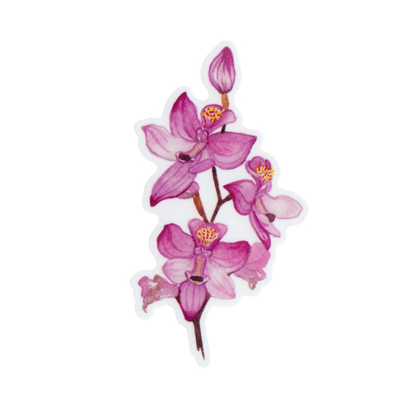 Grass Pink Orchid Vinyl Sticker