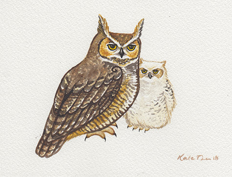 Great Horned Owls Painting