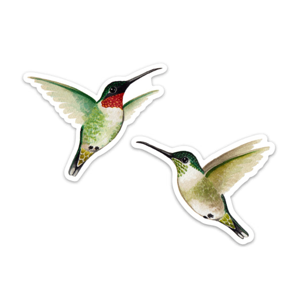 Hummingbird Window Clings