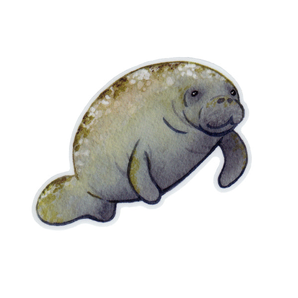 Manatee Vinyl Sticker