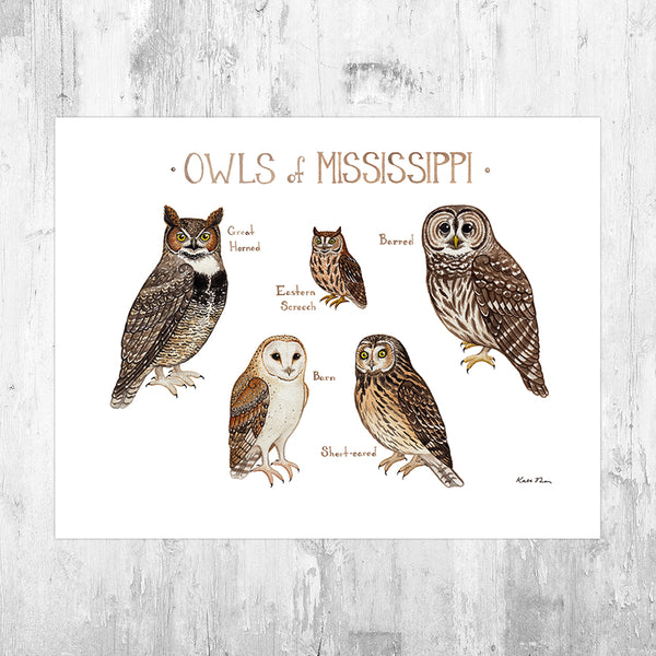 Mississippi Owls Field Guide Art Print