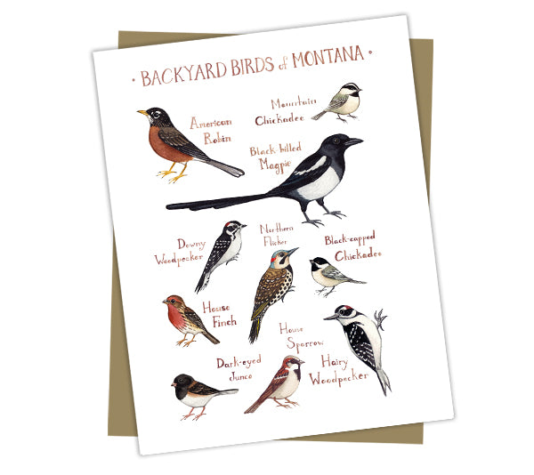 Wholesale Backyard Birds Field Guide Cards: Montana