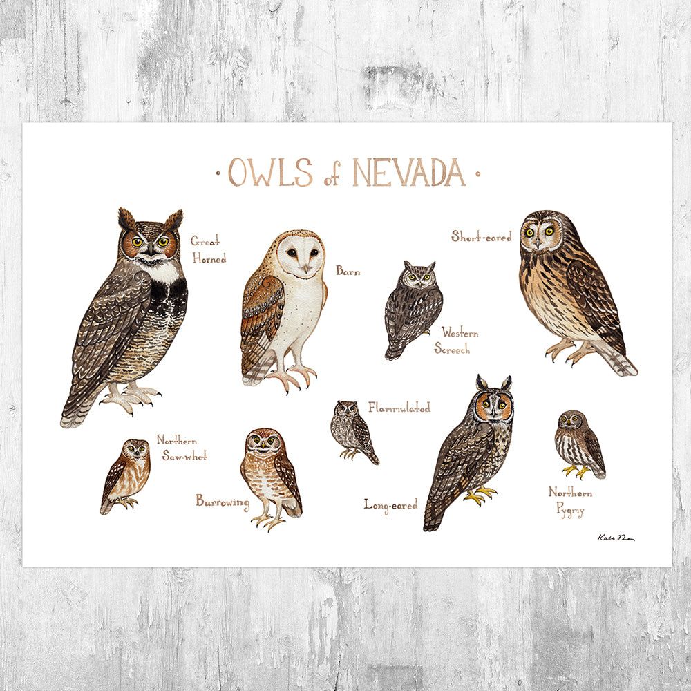 Nevada Owls Field Guide Art Print