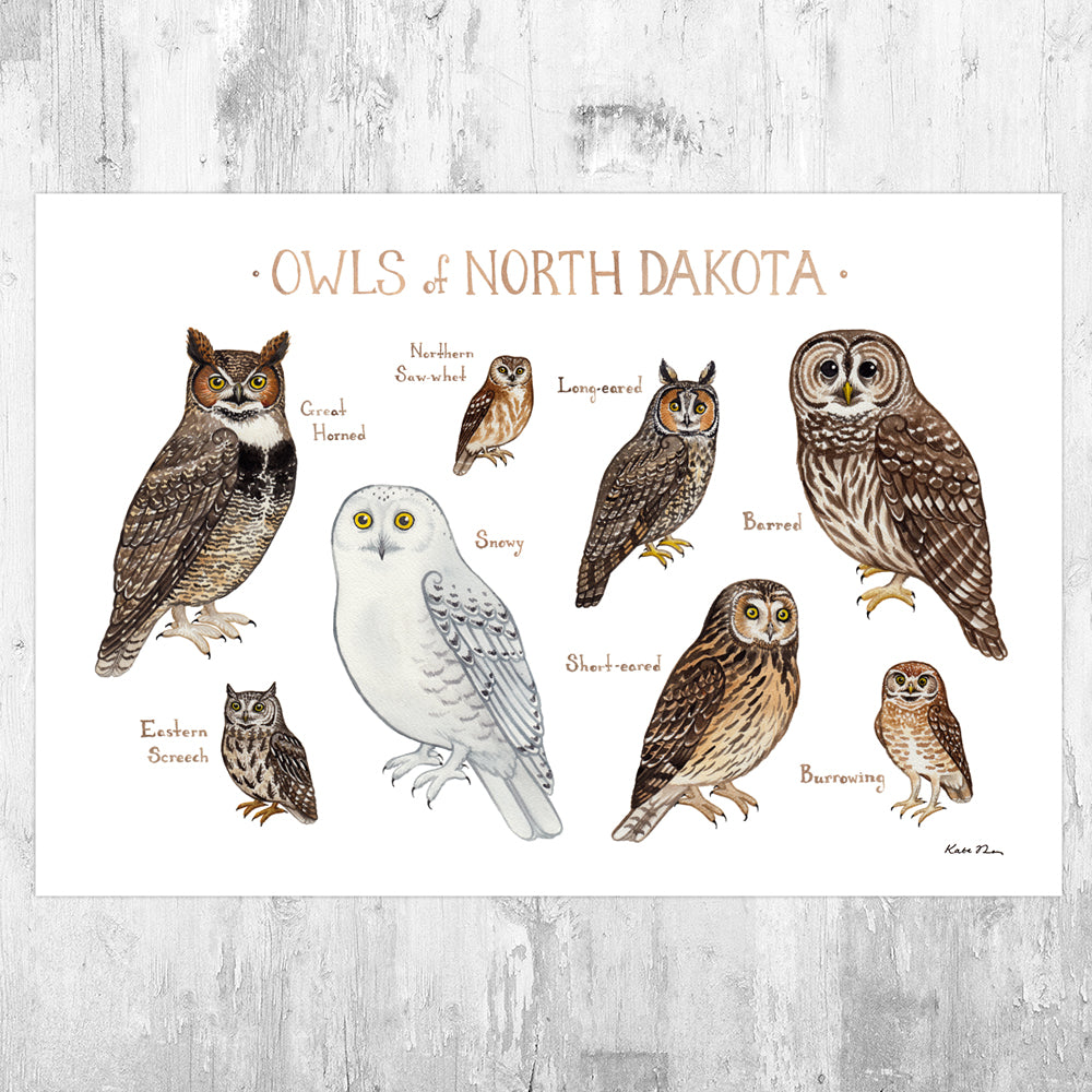 North Dakota Owls Field Guide Art Print