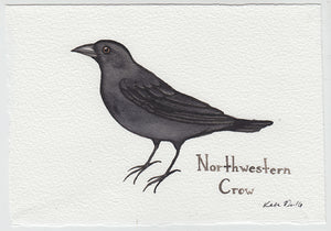 Northwestern Crow Painting