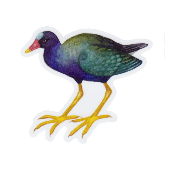 Purple Gallinule Vinyl Sticker