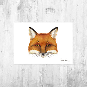 Red Fox Portrait Art Print