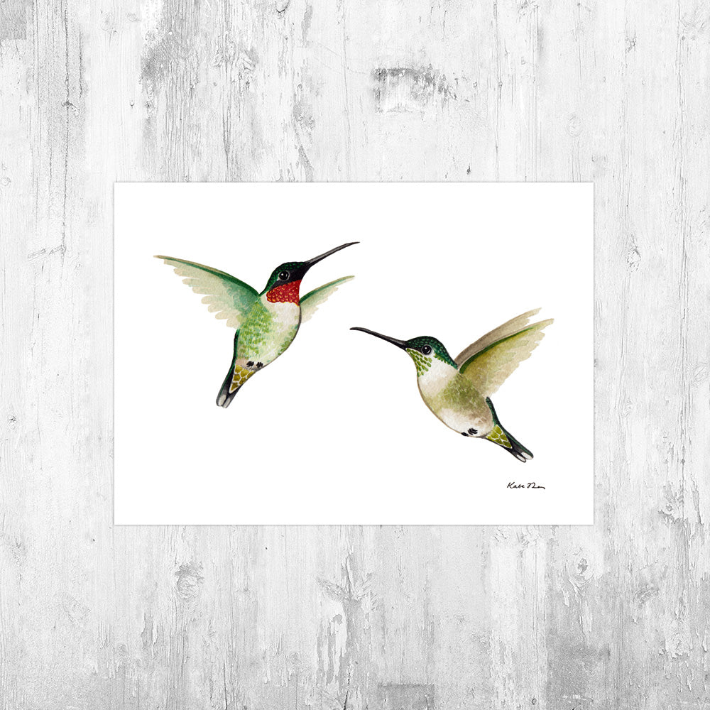 Ruby-throated Hummingbirds Art Print