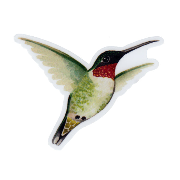 Ruby-throated Hummingbird Vinyl Sticker