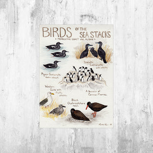 Nature Journal Birds of the Sea Stacks Art Print