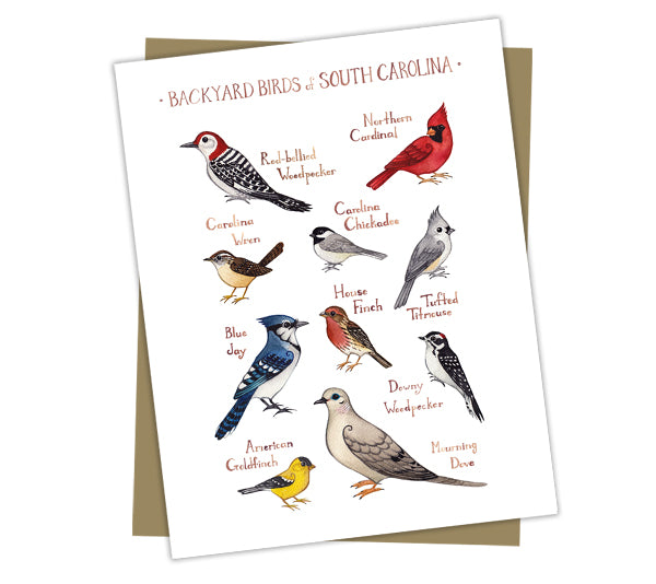 South Carolina Birds Note Cards