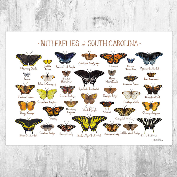 South Carolina Butterflies Field Guide Art Print