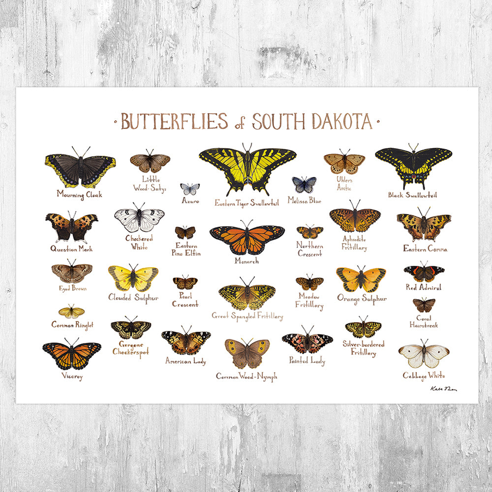 South Dakota Butterflies Field Guide Art Print