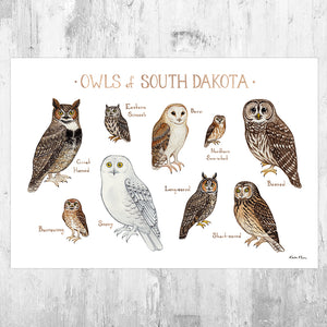 South Dakota Owls Field Guide Art Print