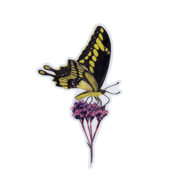 Giant Swallowtail Vinyl Sticker