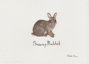 Swamp Rabbit Painting