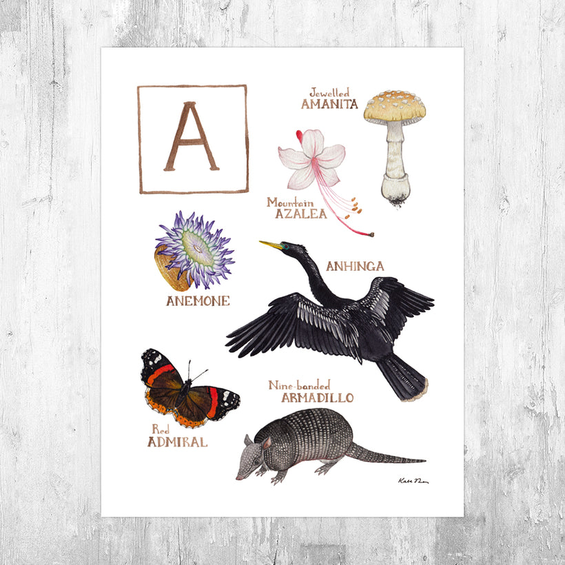 Nature Alphabet Art Prints