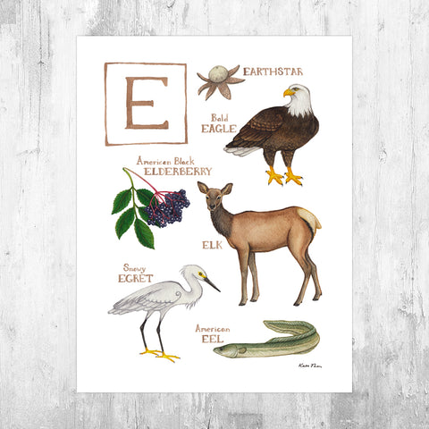 The Letter E Nature Art Print