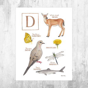 The Letter D Nature Art Print