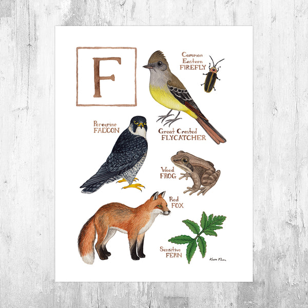 The Letter F Nature Art Print