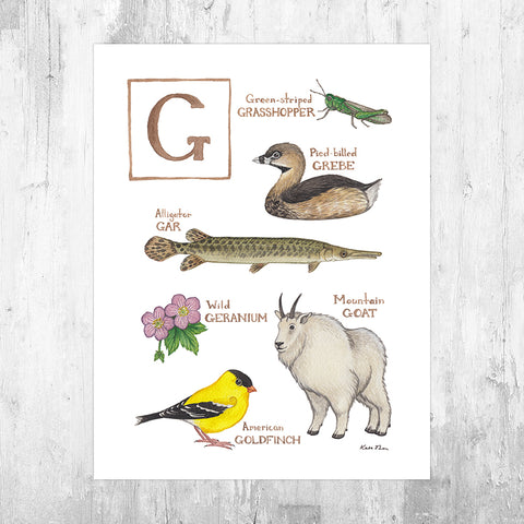 The Letter G Nature Art Print