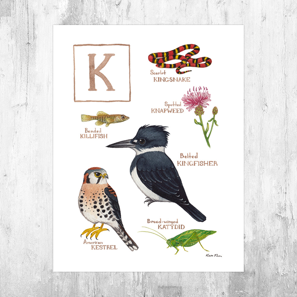 The Letter K Nature Art Print