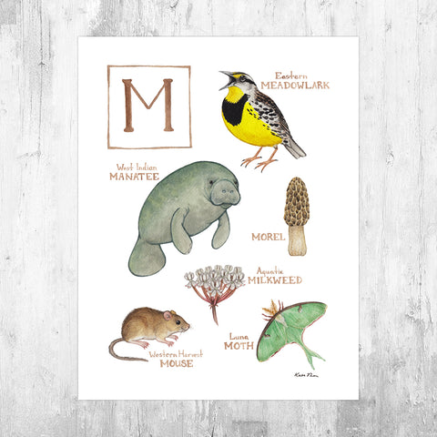 The Letter M Nature Art Print