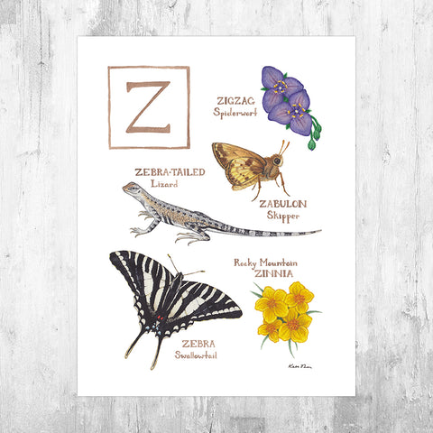The Letter Z Nature Art Print