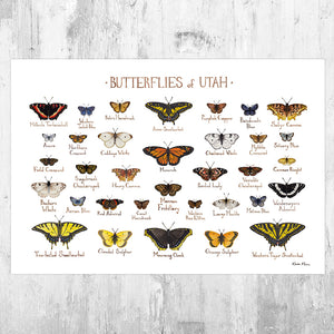 Utah Butterflies Field Guide Art Print