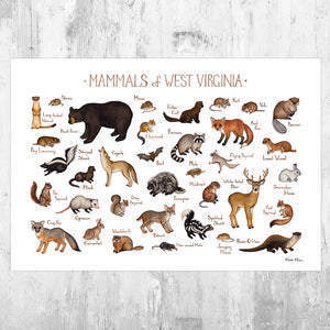 West Virginia Mammals Field Guide Art Print