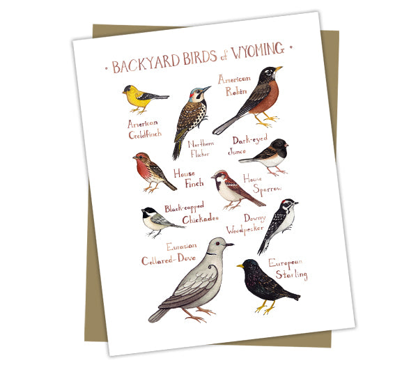 Wholesale Backyard Birds Field Guide Cards: Wyoming