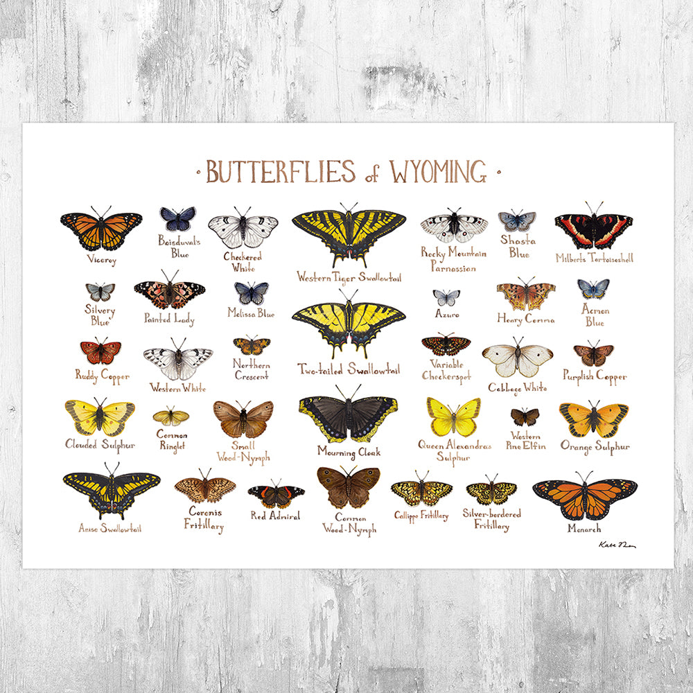 Wyoming Butterflies Field Guide Art Print