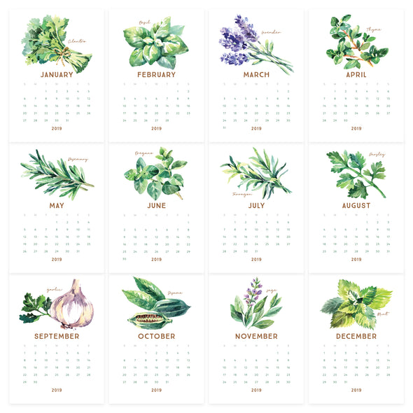 Printable 2019 Watercolor Herb Desk Calendar