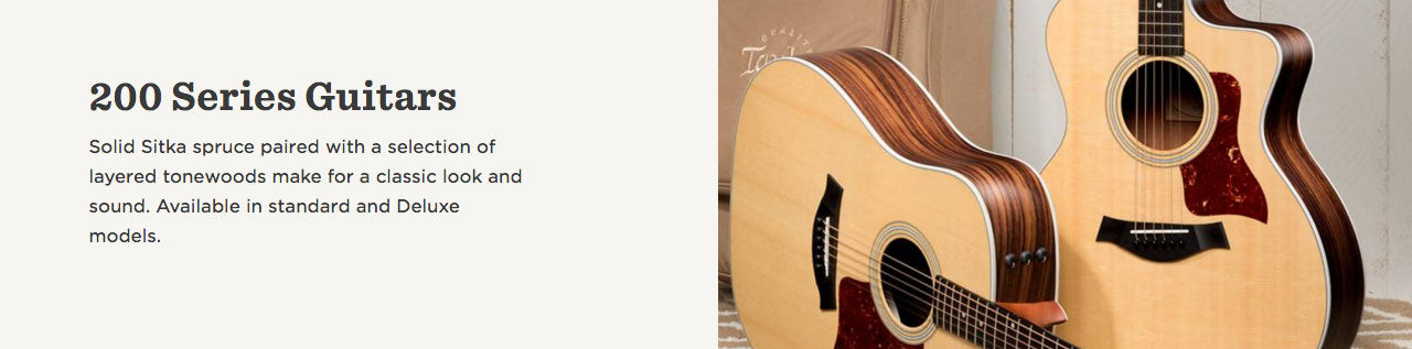 Taylor Guitars | 2 Series