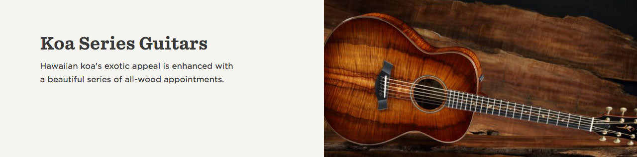 Taylor Guitars | Koa Series