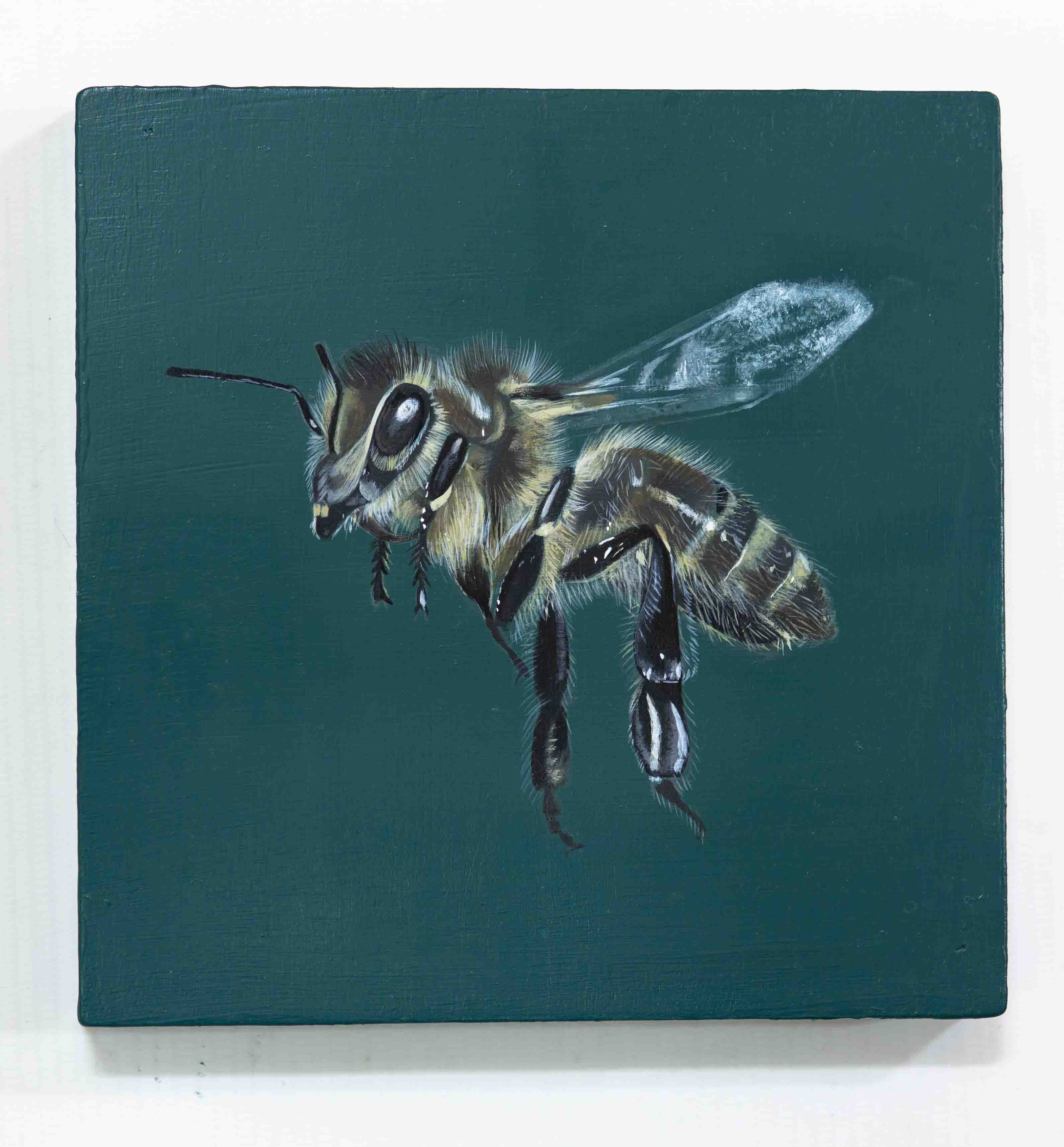 Honey Bee Acrylic Painting