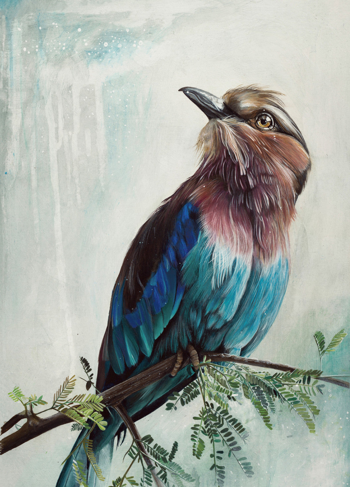 Lilac Chested Birdie Limited Edition Giclee print