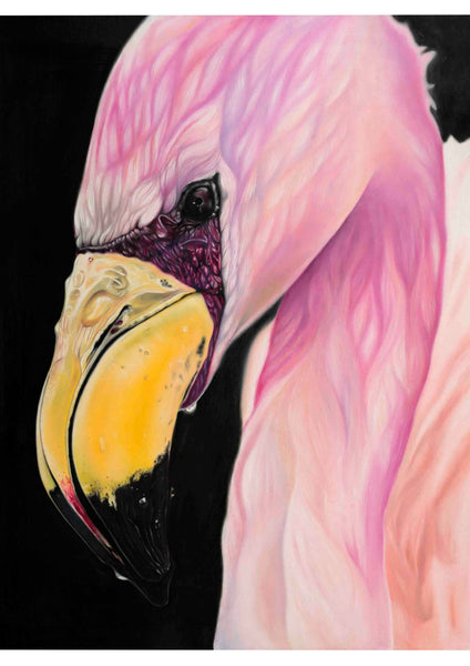Flamingo Dreams Giclee Print
