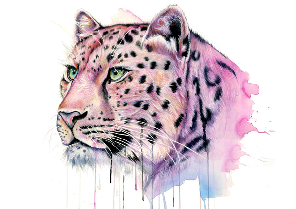 """Pink Leopard"" Archival Quality Giclee print"