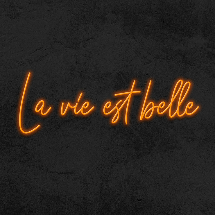 la vie est belle neon sign led mk neon