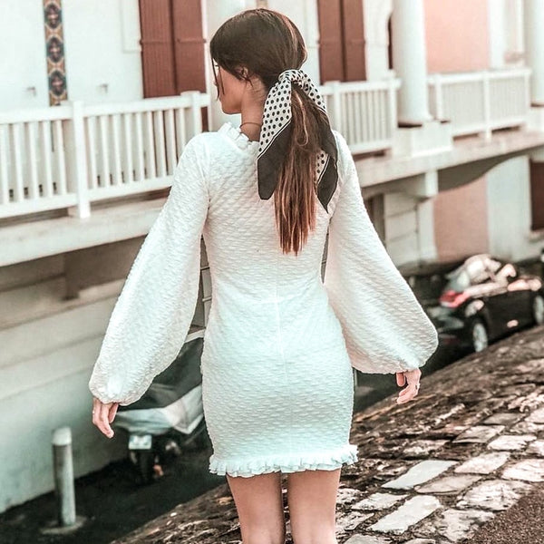 Sabitha Textured Mini Dress