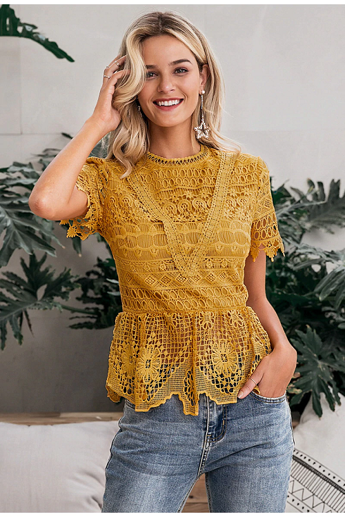 Lamika Embroidered Lace Top