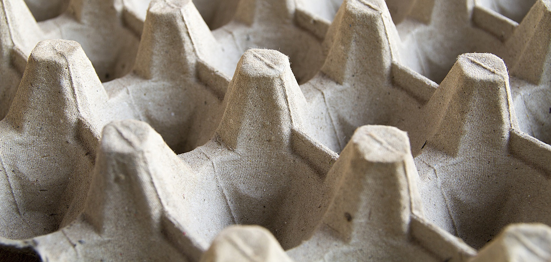 Close up image of empty cardboard egg carton container