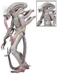 XENOMORPH - ALBINO DRONE ALIENS Series 9 Movie Concept Figure - Far West Toys