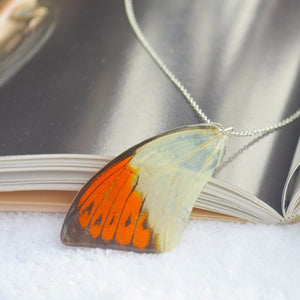 Magical Butterfly Wing  Pendant w/ 925 Sterling Silver Chain Necklace - The GearBuyz Store