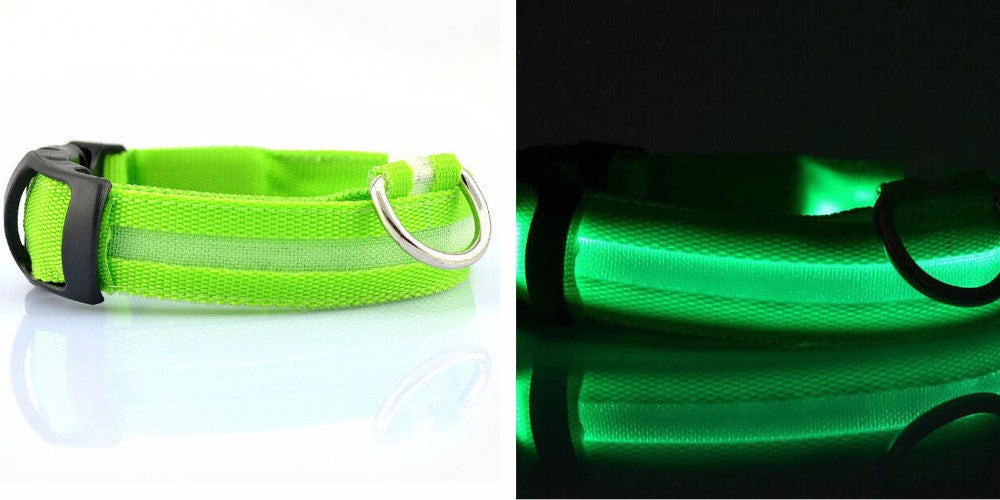 Glow in the Dark Nylon LED Lighted Cat & Dog Collar - The GearBuyz Store